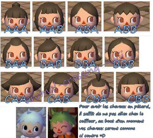 Blog De Animal Crossing Wii Page 7 Astuces Trucs