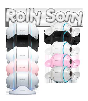 Rolly Sony