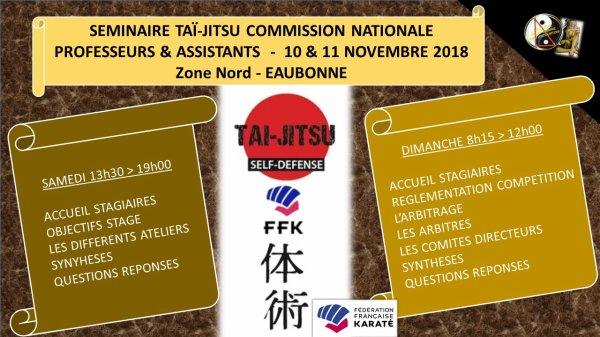 Premier Séminaire 'Commission Nationale Taï-Jitsu'  2018/2019