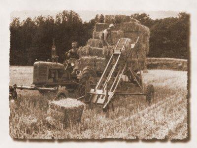L'agriculture à SIDI BRAHIM : le début de sa modernisation
