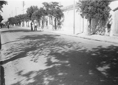 SIDI HAMADOUCHE - Les Trembles : Photos anciennes.