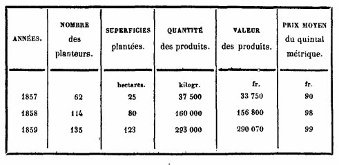 Sidi Brahim : La culture du tabac 1857