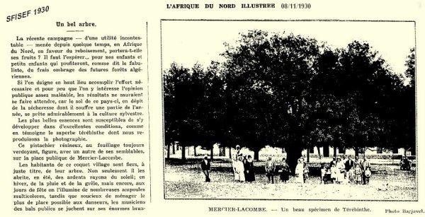 Sfisef - Mercier Lacombe 1930