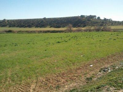 Le village et la vallée de Zelifa.