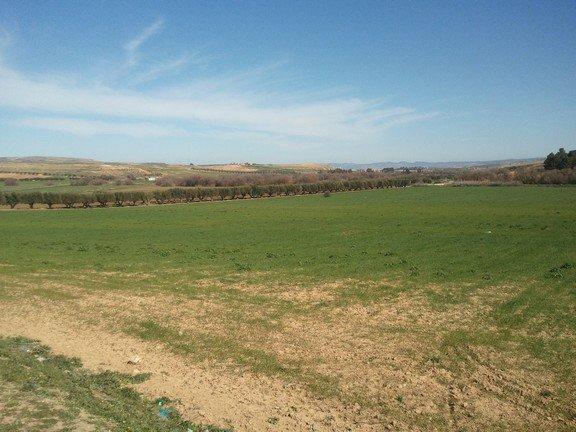 Zelifa ,une vallée antique, trait d'union entre la Mekerra et le Sig.