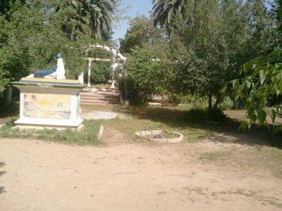 Le jardin publique de Sidi Be Abbès.2013