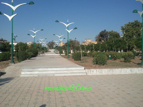 Sidi Bel Abbes : la Macta aujourd'hui
