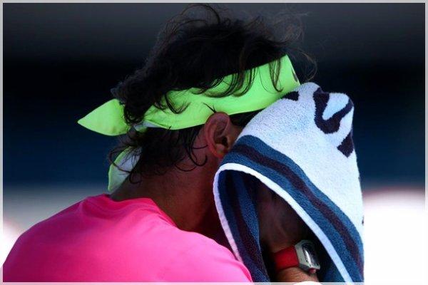 Grand Chelem - Australian Open / Quart de Finale
