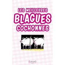 LES MEILLEURS BLAGUES COCHONNE