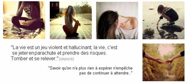 Citation n°4