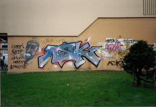 *nsk by cern