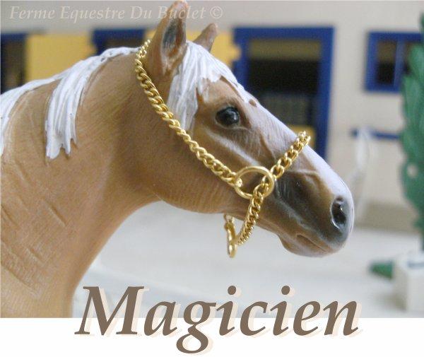 Magicien