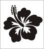 Team-Flower55