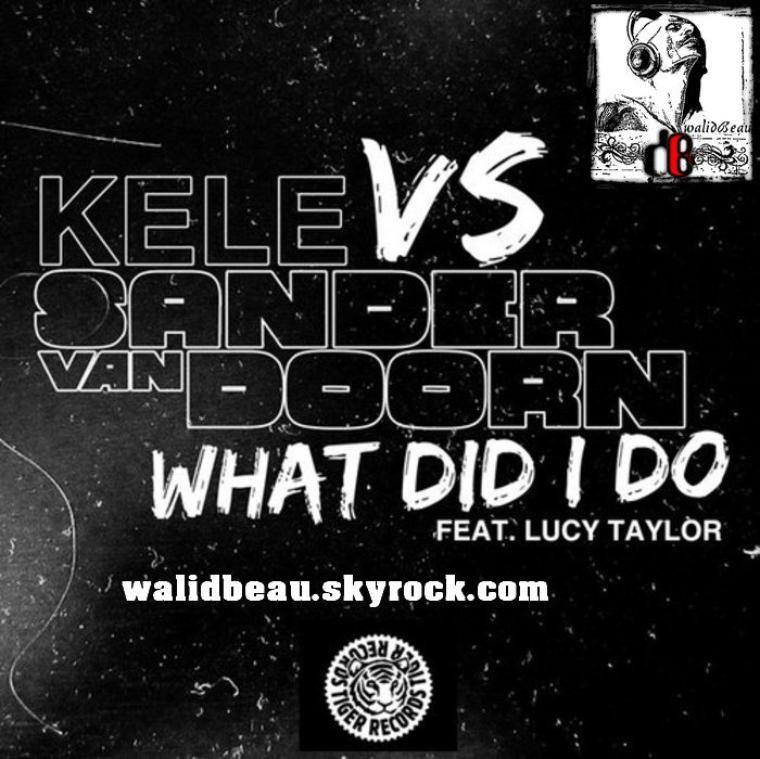kele vs sander van doorn ft lucy taylor  / what did i do (radio mix) (2012)