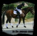 Photo de My-Dreams-Horses