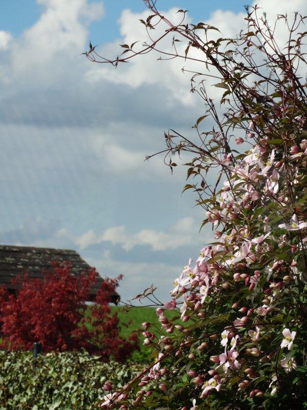 ciels de mai à Nivelles