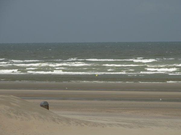 Sur la plage abandonnée.