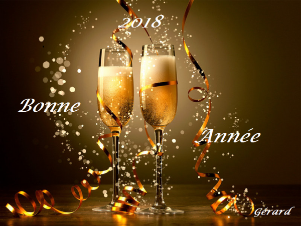 Merveilleuse année 2018