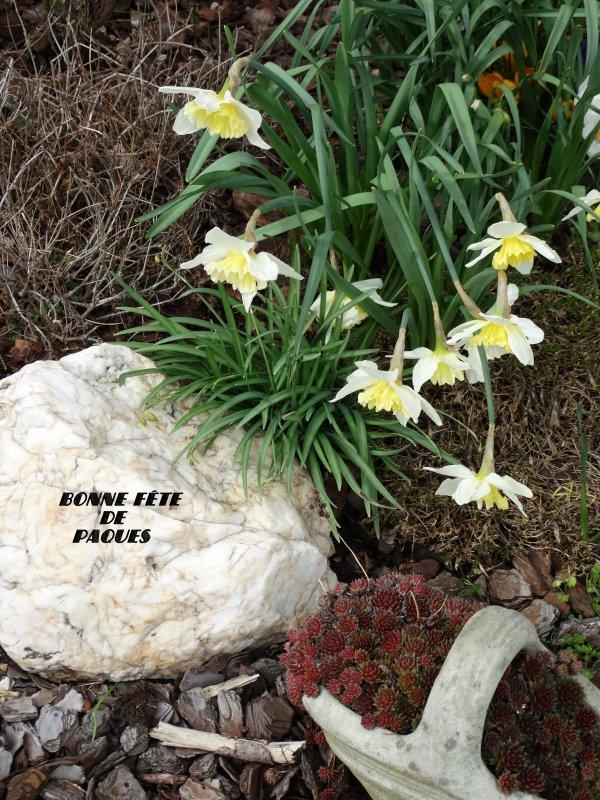 Joyeuse fête de Pâques.