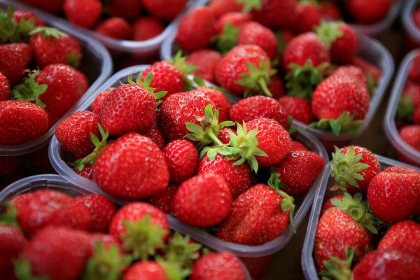 Méfiez-vous de votre ravier de fraises!