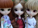 Photo de WeLovePullip