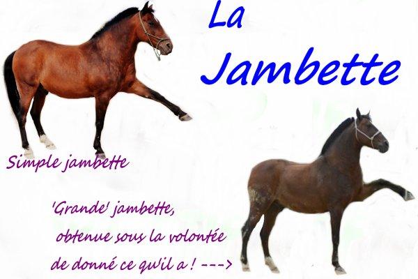 Tutoriel Jambette
