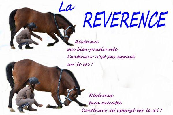 Tutoriel Révérence