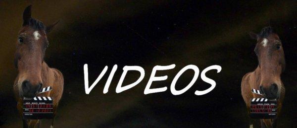 Vidéos !
