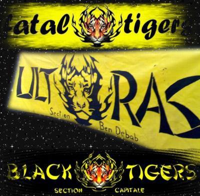 logo fatal tigers