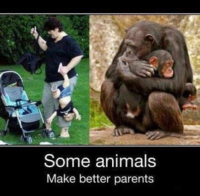 that's TRUE! :P