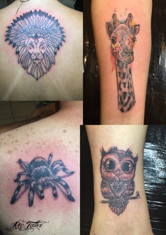 Ric Tattoo 06.19.88.58.27 / 04.91.50.80.04 /// Lion / Coiffe Indienne / Girafe / Mygale / Chouette.