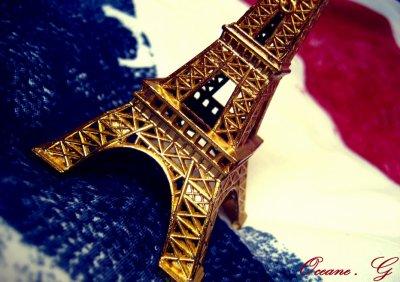 I LOV£ LA FRANC£