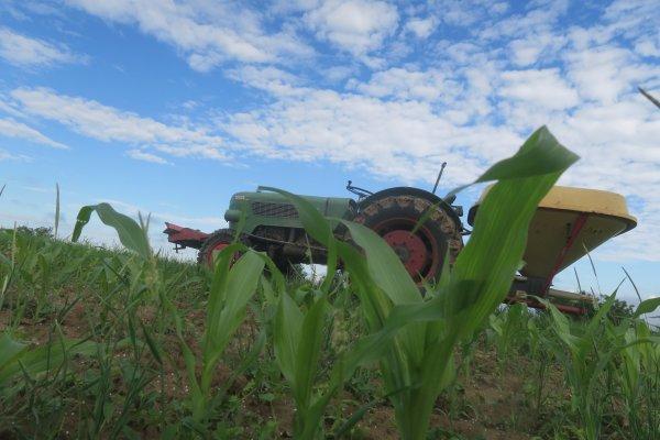 Balade dans le petit monde agricole pour le plaisir tout simplement