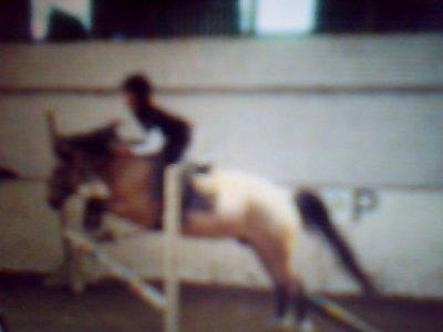 l'équitation = ma passion !!!! <3