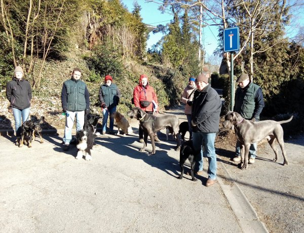 18/03/2018 wandeling / promenade (pictures Jean Luc & Christiane)