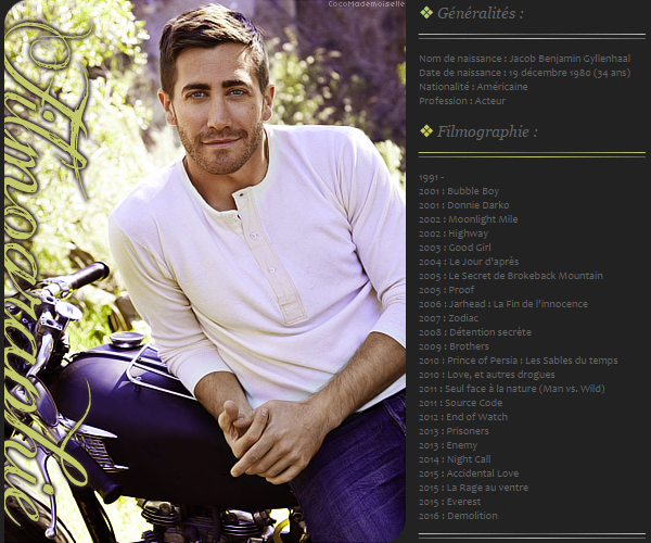 Filmographie Jake Gyllenhaal