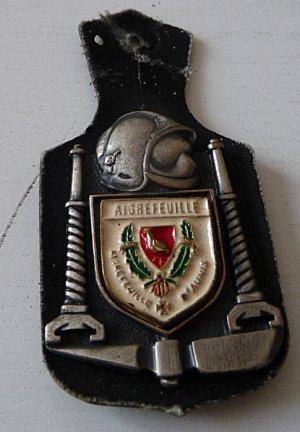 INSIGNE DE AIGREFEUILLE 17