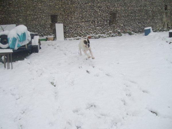 supper pour bacchus de la neige et beaucoup de neige