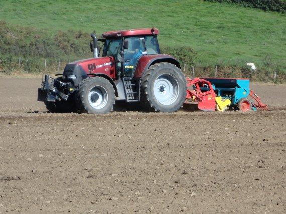 semis de ray grass 2011  avec le case cvx 175
