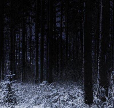 Murmure d'un silence, chapitre 2