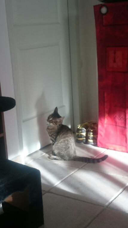 Louna qui attend devant la porte