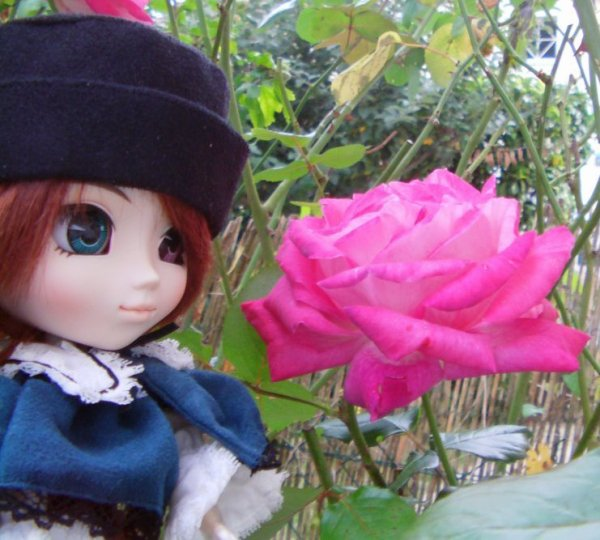 Séance photo Pullip : Récompense de Erza-3DS