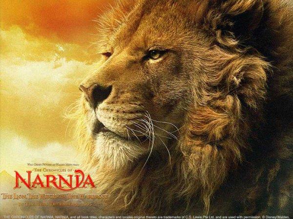 Narnia fin- voilà ce que j'ai ressenti quand mon chien oscar est mort