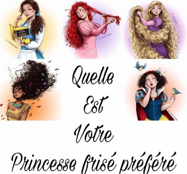 Quel est votre princesse  préféré ?