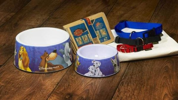 """"""" Info sur Disney's Davy Crockett Ranch ( nouveauté pour vos chien :) ) """""""
