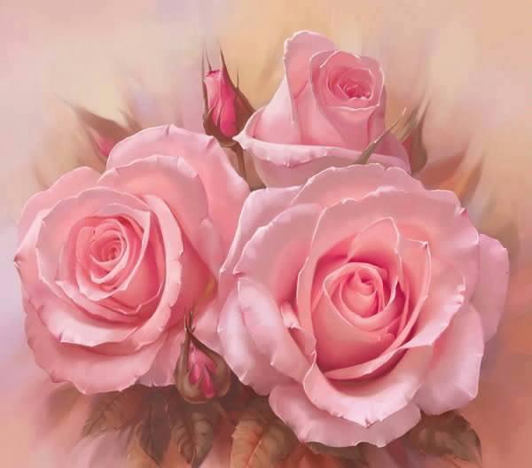 voilà des roses pour le plaisir