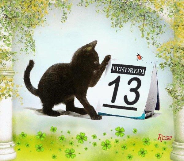 déjà 21 semaine que tu es partie mémère - Hommage as mémère une de mais chatte décède