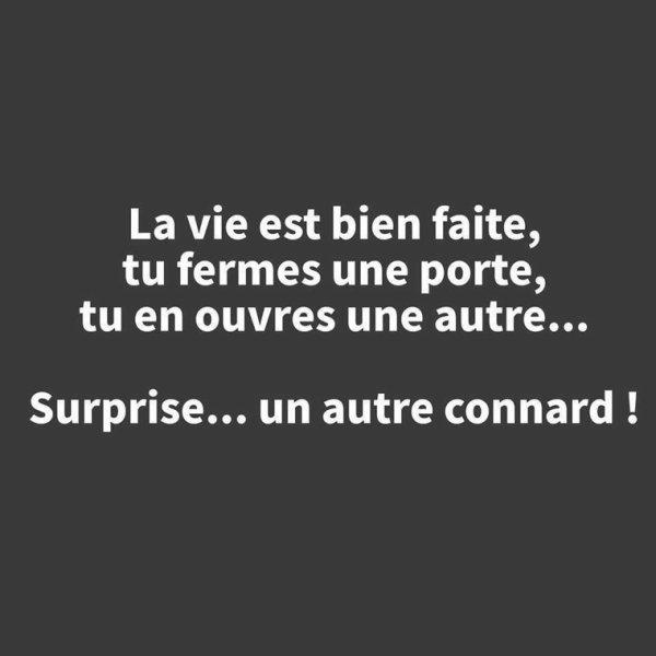 Surprise lol
