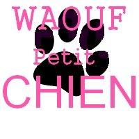 Blog de petit-chien-wouaf