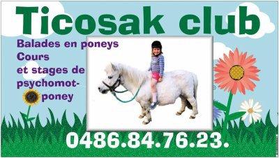 Depuis 2007 ... Ticosak© / Ecurie d'élevage du Bois de Serrée